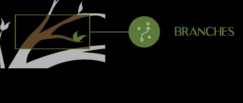 Tactics Branches closeup of the Eureka Process